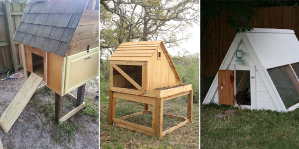 Should I Buy A Readymade Chicken Coop Or I Should Make One Myself